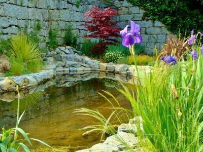Angenehme Gärten